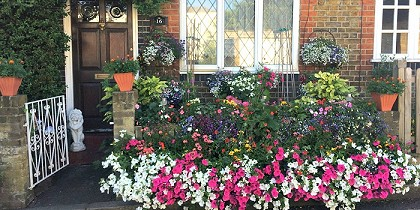 • Record entries for this year's Richmond Borough in Bloom competition